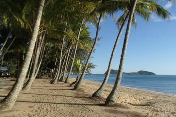 Beautiful Palm Cove