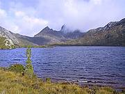 Cradle Mountain National Park Day Tour