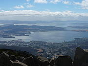 Mount Wellington (2hr) Morning Tour